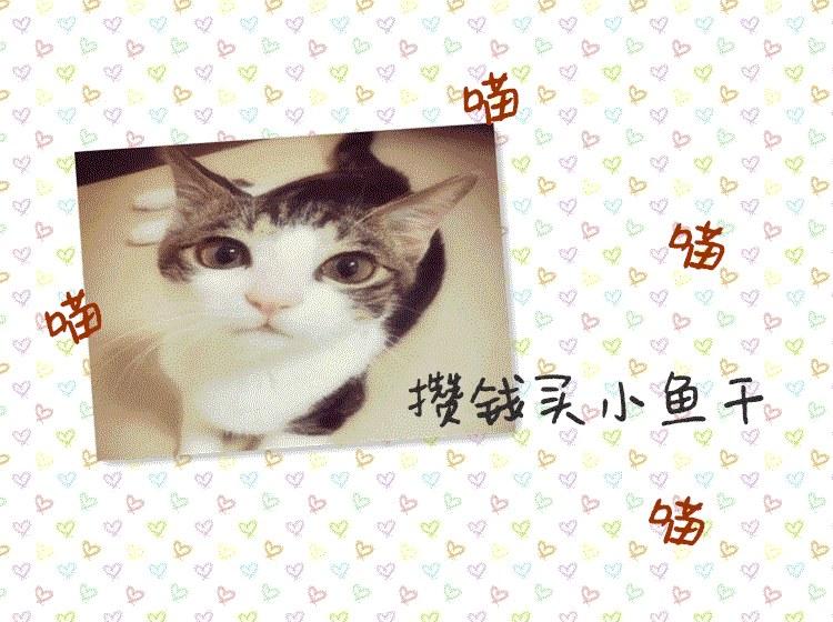 initpintu_副本.png