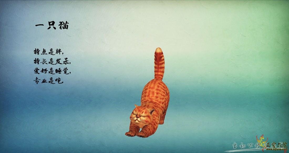 一只猫.jpg