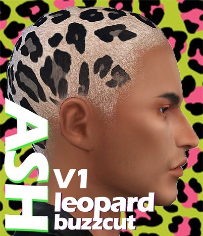 ASH_leopard-buzzcut-V1.png