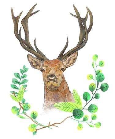 —Pngtree—deer small fresh green leaves_4368092.jpg