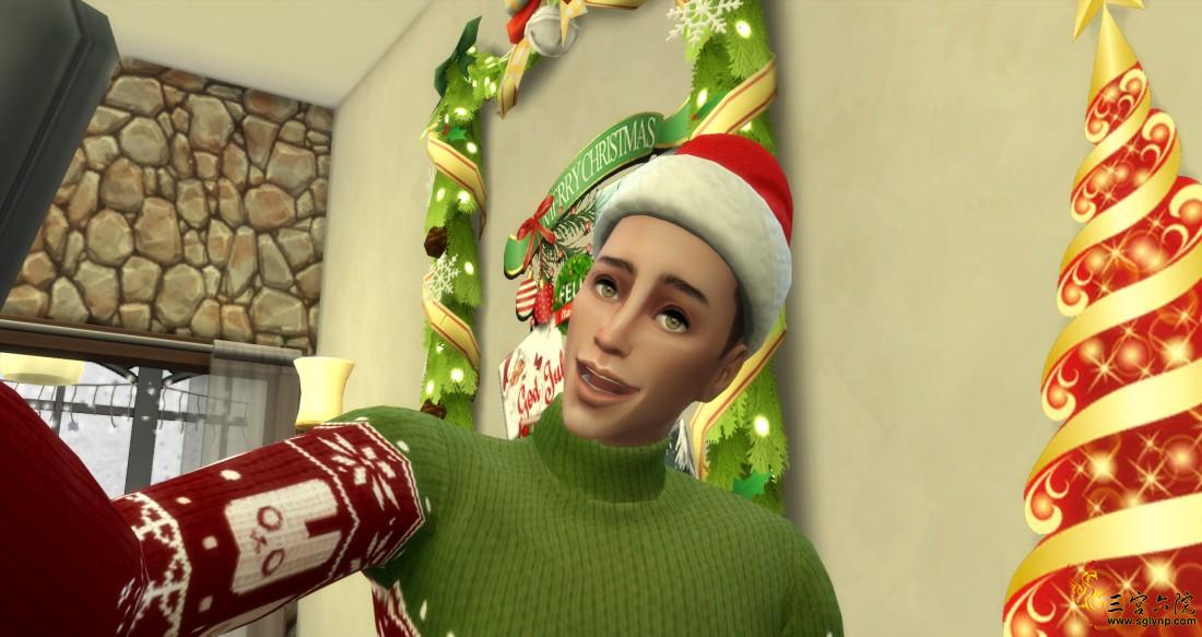 圣诞节 (9).png