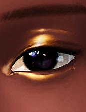 eyeshadow.png