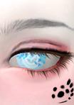 眼睛大样图1.png