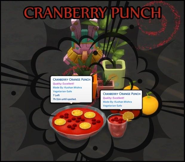 蔓越莓橙子潘趣酒.jpg