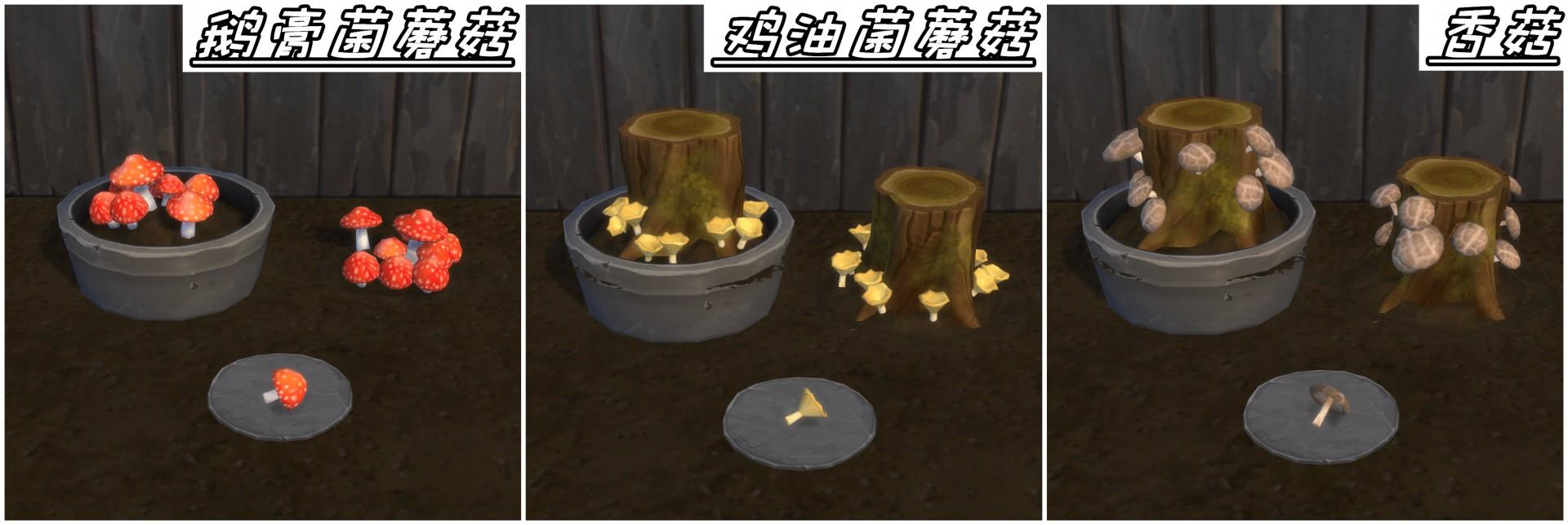 鹅膏菌蘑菇_副本.png