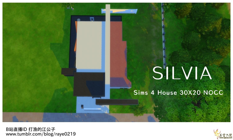 Silvia06.jpg