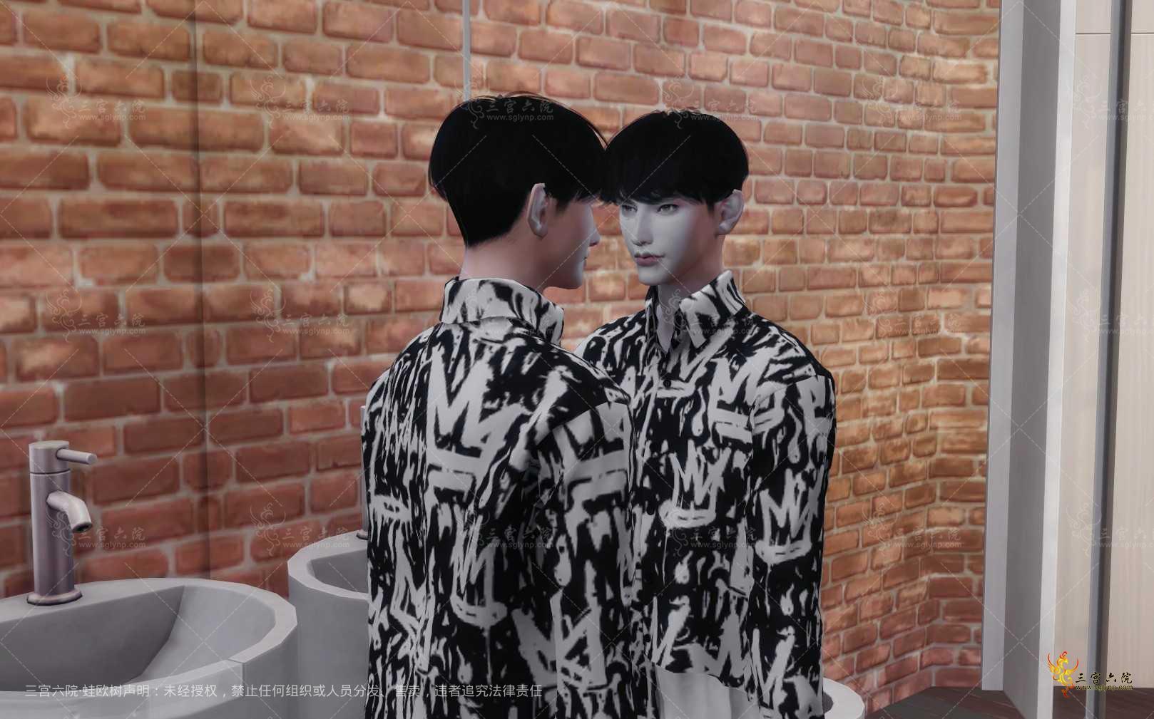 The Sims鈩