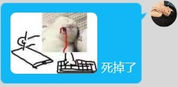 QQ图片20210829181009.png